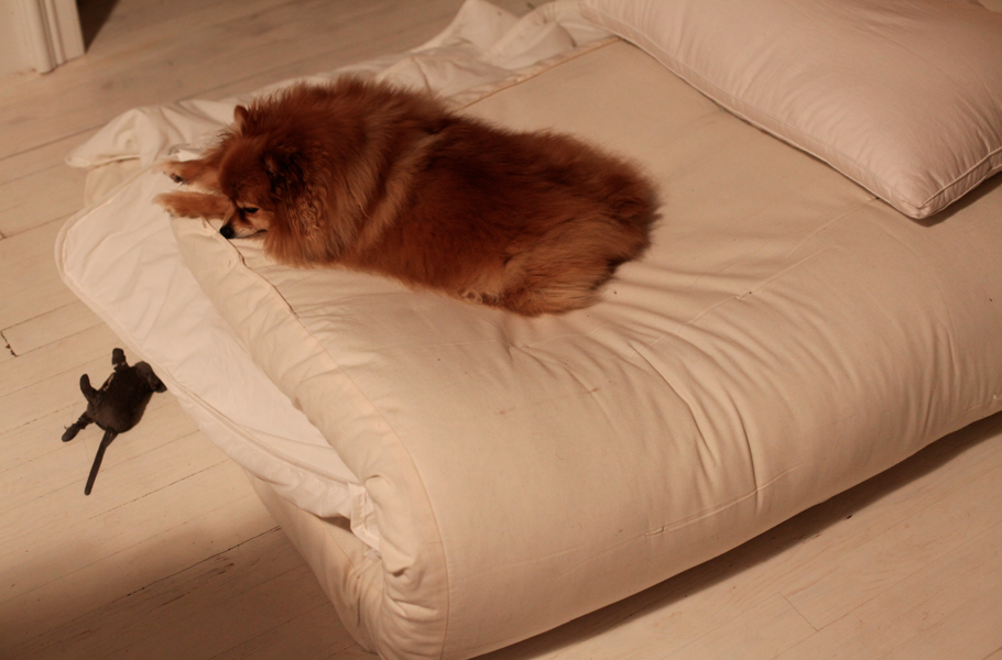 traditional japanese futons | Roselawnlutheran